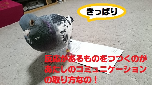 DSC_6853.jpg